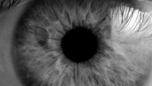 KREAVIS Werbeagentur Eyecatcher